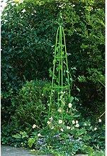Rosa-Bogen-Pyramide Garten Grüne 31x31x200cm