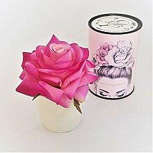 Rose de Boheme 801276 Künstliche Duftrose, Natur,