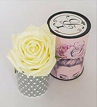Rose de Boheme 801284 Künstliche Duftrose, Natur,