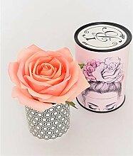 Rose de Boheme 801287 Künstliche DuftRose Natur,