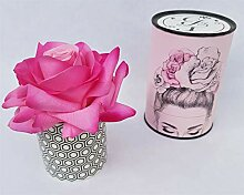 Rose de Boheme 801289 Künstliche Duftrose, Natur,