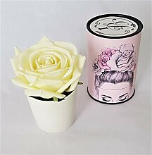 Rose de Boheme 801290 Künstliche Duftrose, Natur,