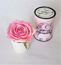 Rose de Boheme 801292 Künstliche DuftRose Natur,