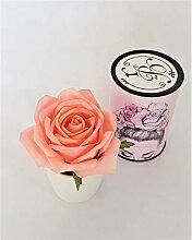 Rose de Boheme 801293 Künstliche DuftRose Natur,