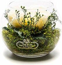 Rosen-Te-Amo Langlebiger Blumenstrauß aus 3