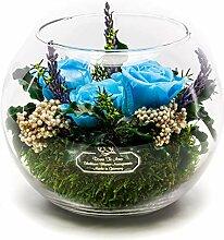 Rosen-Te-Amo Premium Blumenstrauß mit