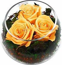 Rosen-Te-Amo Stilvoller Blumenstrauß aus 3