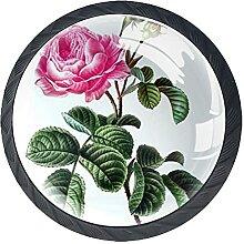 Rosenblütenfrühling, 4Pack ABS Kommode Knöpfe