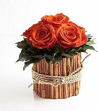 Rosengesteck 6 konservierte Rosen lang haltbar 3