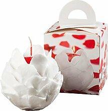 Rosenkerze weiße Blüten mit rotem Kern und