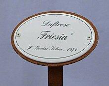 Rosenschild Emaille, Duftrose, Beetrose: Friesia,