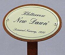 Rosenschild Emaille, Kletterrose: New Dawn,