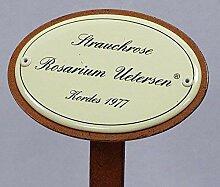 Rosenschild Emaille, Strauchrose: Rosarium