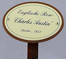 Rosenschild Rosenstecker Emaille, Englische Rose