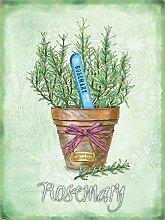Rosmarin Kräuter Pflanze in Kanne, vintage alt für die Küche, Garten, Schuppen oder Schrebergarten Metall/Stahl Wand Zeichen - 20 x 30 cm