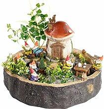 Royal Gardineer Mini Garten: Handgefertigter