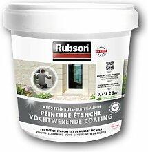 Rubson 1802026 Wasserdichte Wandfarbe, für den