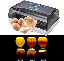 Ruier-hui Eier Inkubator Automatisch mit
