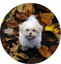 Runde Boden Teppich 3D Nette Bulldog Gedruckt rutschfeste Badezimmer Teppiche für Kinder Spielen 60 * 60 cm Tapis Boden Teppich Fußmatte , c446bb1