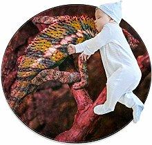 Runder Teppich für Reptilien, Eidechse, für