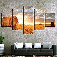 runtooer Bilder Modern Landschaft Landwirtschaft
