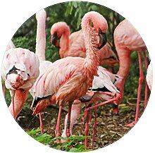 rutschfeste runde Teppiche, Flamingo Pink Love