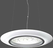 RZB Zimmermann RZB LED-Pendelleuchte 60+ 30W