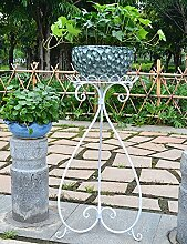 RZM Blumenständer Europäische Art-Eisen-Blumen-Zahnstange-Fußboden-Art Blumen-Topf-Rahmen-Balkon Wohnzimmer-Spinnen-Pflanzen Bonsais-Feld-Blumen-Gestell Pflanzentreppe ( Farbe : C , größe : II )