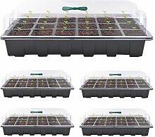 Saatgut-Starter-Tablett, Pflanzenkeimung,