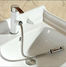 SADASD Badezimmer Waschbecken Wasserhahn alle Kupfer antik Einlochmontage Chrom Upscale Home Bäder mit Schlauch Waschbecken Armaturen (heißes und kaltes Wasser)