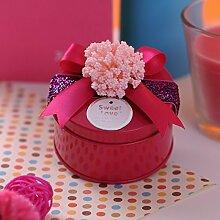 SADASD Geschenk-box Bügeleisen, der Hei Zucker, Hochzeit Hochzeit Products-Hi Zucker Zucker Patrone Patrone Weißblech kreative Zucker Patrone Hochzeit Serie L die Rote