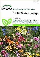 Saflax 18158 Blumenwiese Große Gartenzwerge
