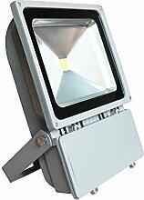 SAILUN 100W LED Strahler Fluter Flutlicht