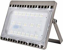 SAILUN® 50W LED Kaltweiß Flutlicht Strahler Außenleuchte Aussenstrahler Wandstrahler Spotbeleuchtung Scheinwerfer Spots Flutlichtstrahler (50W Kaltweiß)