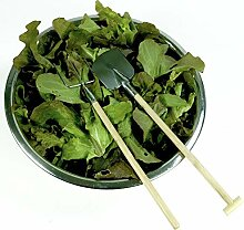 Salatbesteck Forke und Schaufel