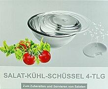 Salatschüssel m. Kühlakku 4-tlg Edelstahl