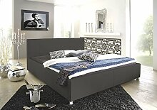 SAM Polsterbett 180x200 cm Katja, grau, Bett aus Kunstleder, abgestepptes Kopfteil, stilvolle Chromfüße, als Wasserbett geeigne