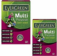 Samen Paket: Groß: Evergreen Purpose Garten