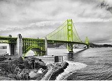San Francisco Bridge Fotodruck in Lindgrün