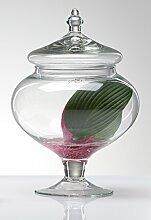 Sandra Rich Glasdose, Glas, transparent 20 x 10 x