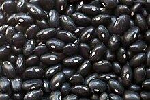 SANHOC Samen-Paket: Bohnen-Samen: Black Turtle