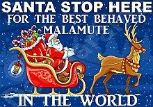 Santa Stop Here für die Best Malamute In Die Welt laminierten Schild Christmas Novelty/lustiges Geschenk Hund Puppy