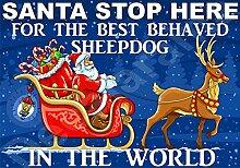 Santa Stop Here für die Best Sheepdog In der Welt laminierte Schild Christmas Novelty/lustiges Geschenk Hund Puppy