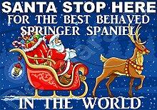 Santa Stop Here für die besten Springer Spaniel in the World laminiert Schild Christmas Novelty/lustiges Geschenk Hund Puppy
