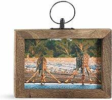 SARO LIFESTYLE Woodland Collection