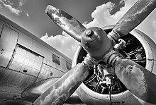 Scenolia Aviation 4x2,70m Panorama Fototapete XXL