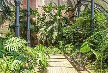 Scenolia Fototapete Jardin Barcelona 3x2,70m Deko