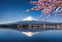 Scenolia Fototapete Mont Fuji 3x2,70m Deko + Bild