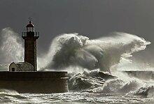 Scenolia Fototapete Türposter Phare DE Porto