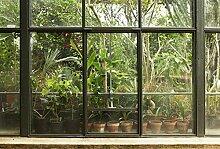 Scenolia XXL Panorama-Poster Tropical Greenhouse